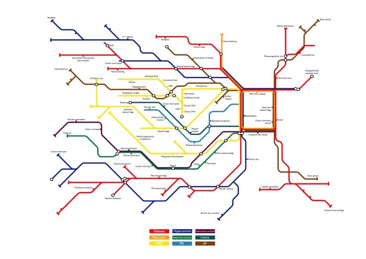MAP OF RETINA